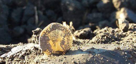 Roman gold coin find with Minelab X-Terra 705 and Nel Tornado